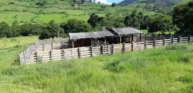1010/Extraordinária fazenda de 5.199 ha para pecuária - Foto 15