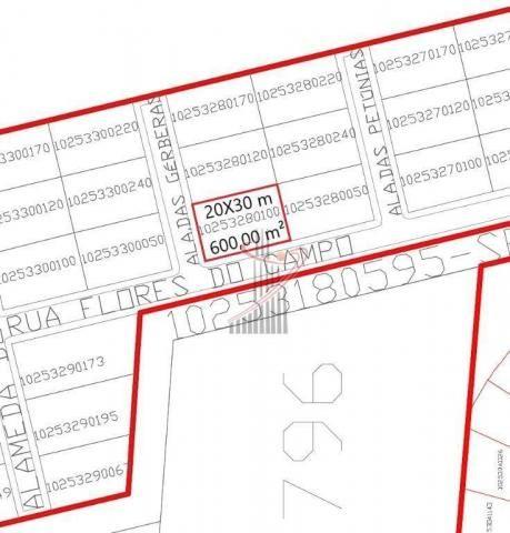 Terreno à venda, 600 m² por R$ 140.000,00 - Cond. Rose Garden - Foz do Iguaçu/PR - Foto 13