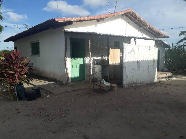 FAZENDA DE COQUEIROS COM EXCELENTE PRODUÇÃO MENSAL ARENA - Foto 13