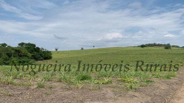 Fazenda com 72 alqueires na região de Itapetininga (Nogueira Imóveis Rurais) - Foto 9