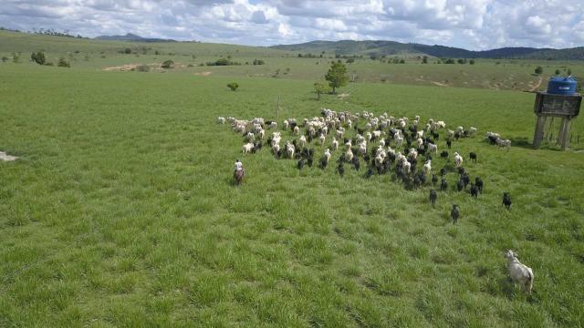 Fazenda em Itamaraju. 5 mil hectares - Foto 6