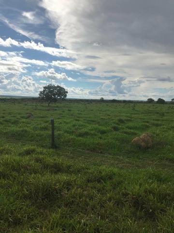 Fazenda 354 hectares, Município de Livramento/MT - Foto 11