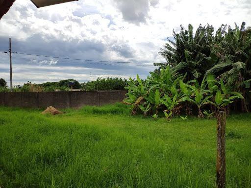 Chácara à venda, 5000 m² por R$ 600.000 - Três Lagoas - Foz do Iguaçu/PR - Foto 5