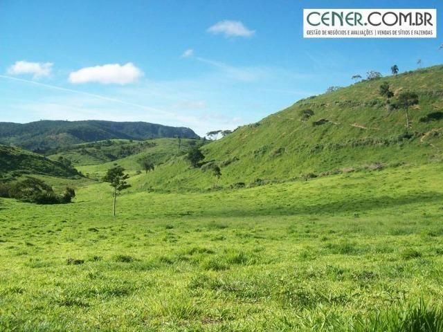 1010/Extraordinária fazenda de 5.199 ha para pecuária - Foto 12