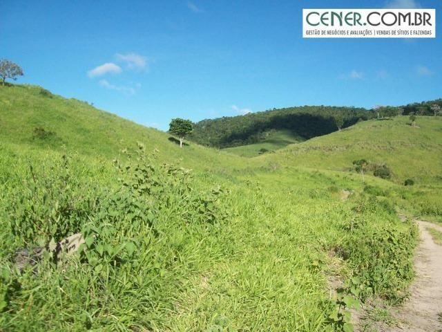 1010/Extraordinária fazenda de 5.199 ha para pecuária - Foto 8