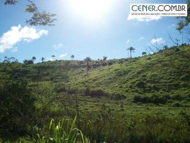 1010/Extraordinária fazenda de 5.199 ha para pecuária - Foto 3