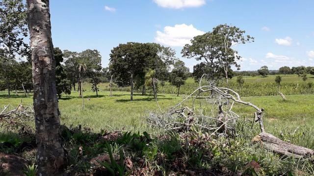 Chácara no município de Cariri do Tocantins - Foto 10