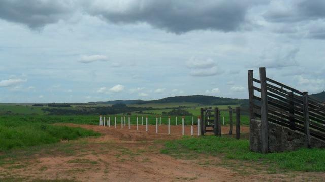 Fazenda de 67 alqueires para lavoura a venda na região de Paraúna GO - Foto 2