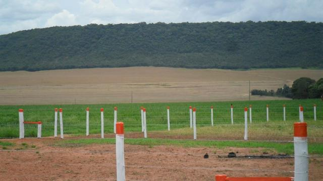 Fazenda de 67 alqueires para lavoura a venda na região de Paraúna GO