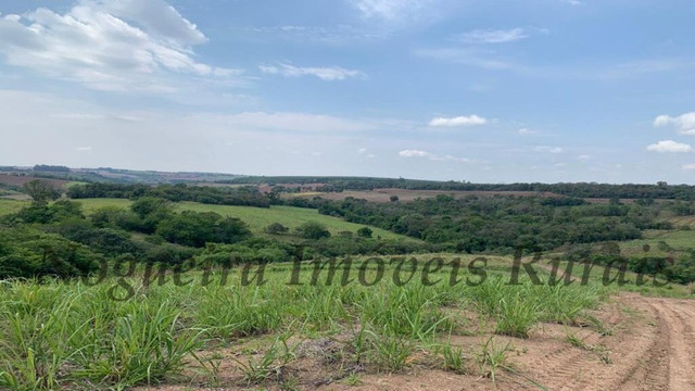 Fazenda com 72 alqueires na região de Itapetininga (Nogueira Imóveis Rurais) - Foto 18
