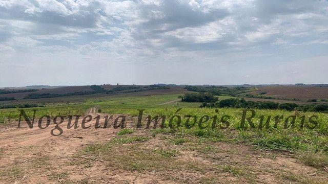 Fazenda com 72 alqueires na região de Itapetininga (Nogueira Imóveis Rurais) - Foto 15