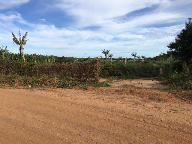 66 hectares no projeto formoso A   irrigaveis  - Foto 2