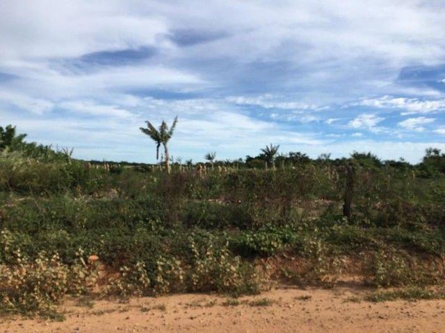 66 hectares no projeto formoso A   irrigaveis