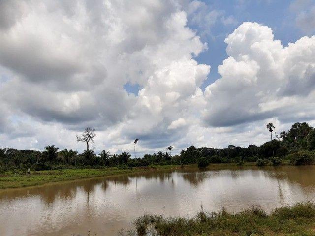 Área de 250 hectares sendo 130 formado  - Foto 5