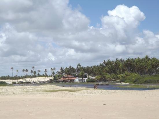 Vendo Área na beira mar da Praia de Pititinga - Foto 13