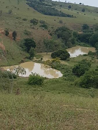 Vendo fazenda de Pecuária com 1.720 hectáres - Foto 15