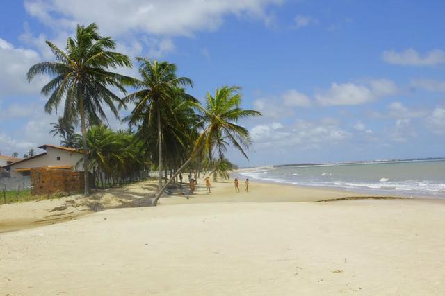 Vendo Área na beira mar da Praia de Pititinga - Foto 12