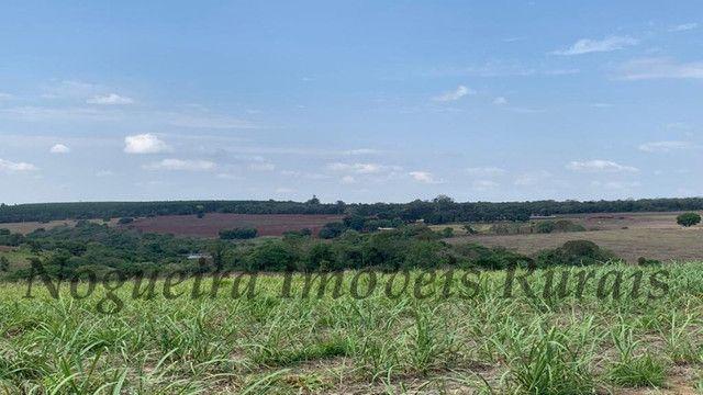 Fazenda com 72 alqueires na região de Itapetininga (Nogueira Imóveis Rurais) - Foto 3