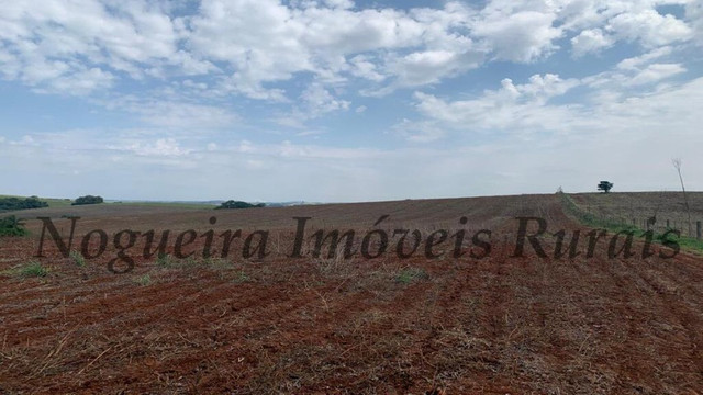 Fazenda com 72 alqueires na região de Itapetininga (Nogueira Imóveis Rurais) - Foto 6