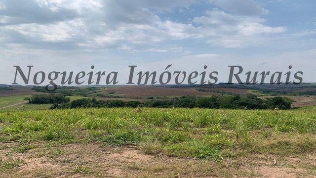 Fazenda com 72 alqueires na região de Itapetininga (Nogueira Imóveis Rurais) - Foto 2