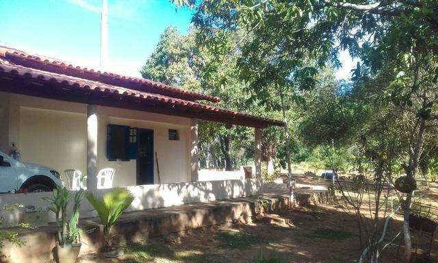 Sitio Poucos Minutos Do Centro/Energia 30 kva/Poco Artesiano 90.000 L/Hora - Foto 11