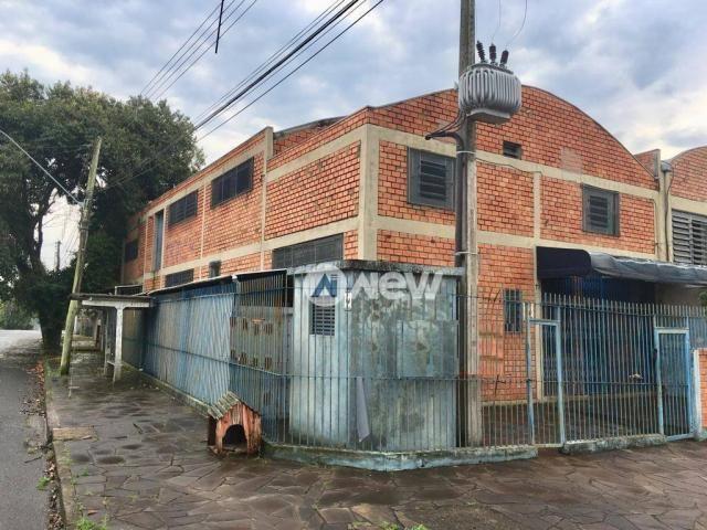 Pavilhão à venda, 490 m² por r$ 586.000,00 - guarani - novo hamburgo/rs - Foto 2