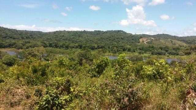 Fazenda na Rodovia BA 001 - Itacaré/Camamu - Foto 2