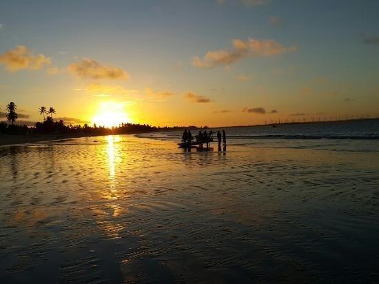 Vendo Área na beira mar da Praia de Pititinga - Foto 6