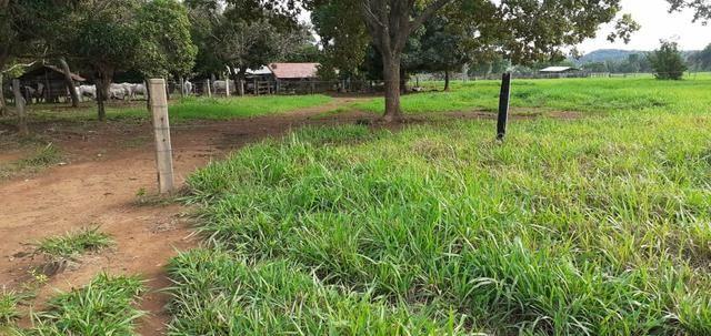 Fazenda - Foto 2