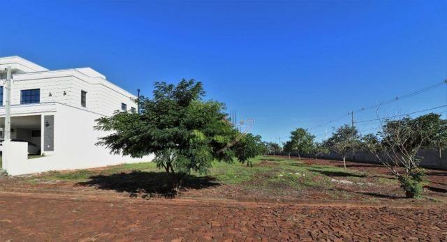 Terreno à venda, 600 m² por R$ 140.000,00 - Cond. Rose Garden - Foz do Iguaçu/PR - Foto 2