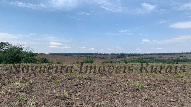 Fazenda com 72 alqueires na região de Itapetininga (Nogueira Imóveis Rurais) - Foto 7