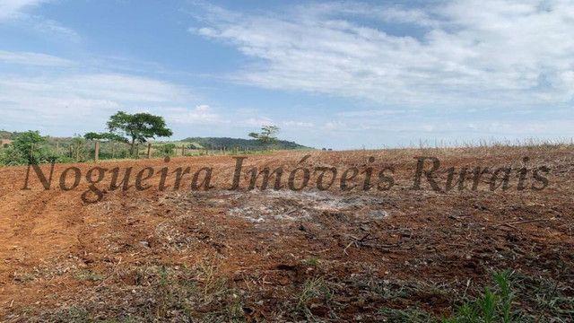 Fazenda com 72 alqueires na região de Itapetininga (Nogueira Imóveis Rurais) - Foto 20