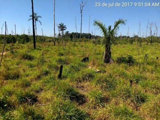 Fazenda em Candeias do Jamari com 100 hectares - FA0050