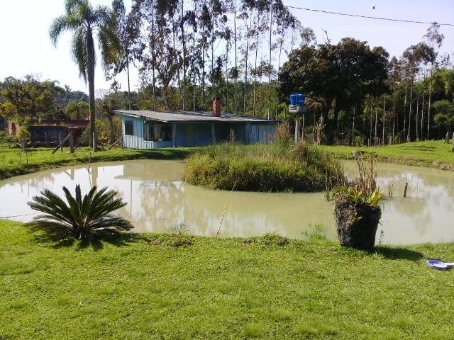 Chácara c/Terreno 6000m2 02 casas * 02 tanques c/ peixes Doc. ok - Foto 3
