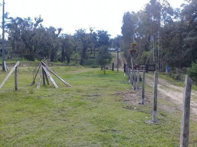 Chácara c/Terreno 6000m2 02 casas * 02 tanques c/ peixes Doc. ok - Foto 6