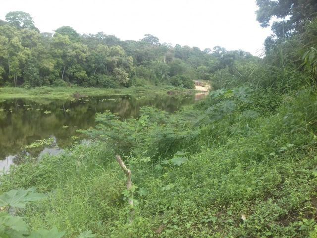 Fazenda Marau/Ubaitaba - Foto 8