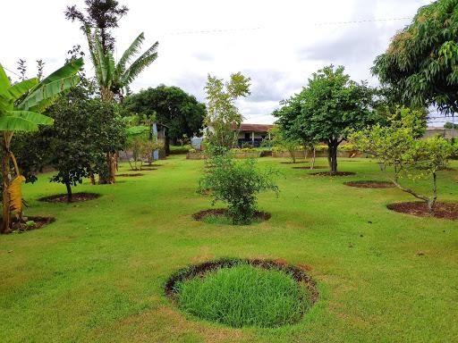 Chácara à venda, 5000 m² por R$ 600.000 - Três Lagoas - Foz do Iguaçu/PR