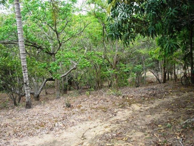 COD-116: Sítio em Bicuiba - Saquarema - Foto 7