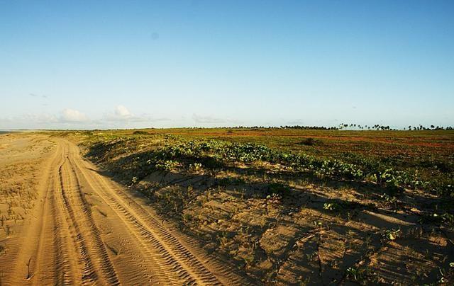 Vendo Área na Beira Mar na Paria de São Miguel do Gostoso - RN - Foto 6