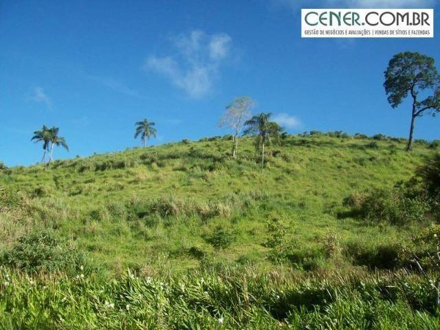 1010/Extraordinária fazenda de 5.199 ha para pecuária - Foto 5