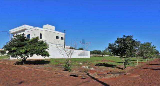 Terreno à venda, 600 m² por R$ 140.000,00 - Cond. Rose Garden - Foz do Iguaçu/PR - Foto 4