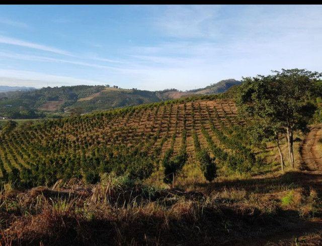 Custeio rural sem fiadores - Foto 5