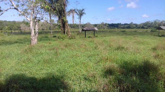 Sítio no Pará,20 hectares com pasto, curral, casa ,igarape por 250 mil reais - Foto 6