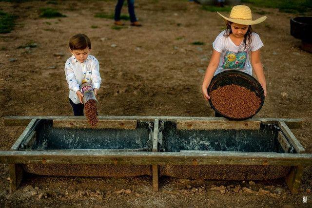 Fazenda a venda no Mato Grosso doo Sul-Corumbá - Foto 6