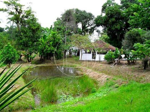 Sítio à venda em Centro, Guapimirim cod:500503 - Foto 7