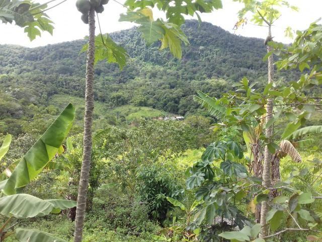 Fazenda Marau/Ubaitaba - Foto 10