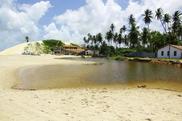 Vendo Área na beira mar da Praia de Pititinga - Foto 11