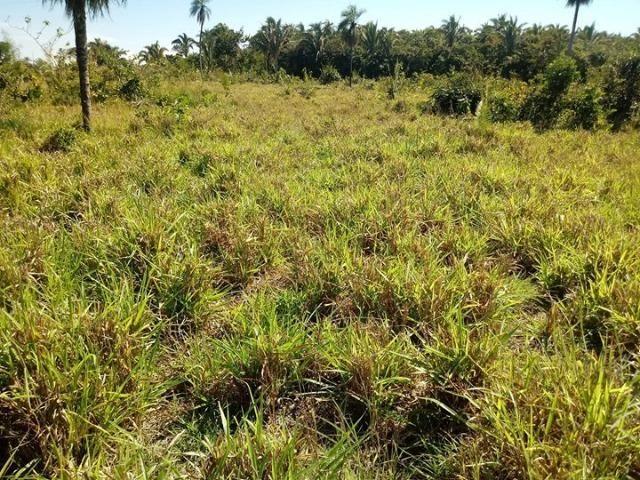 Chácara a 9 km de Acorizal com 38.2 hectares