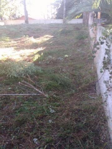 TERRENO RESIDENCIAL À VENDA, PINHEIRINHO, CURITIBA - TE0173. - Foto 2