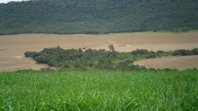 Fazenda de 67 alqueires para lavoura a venda na região de Paraúna GO - Foto 9